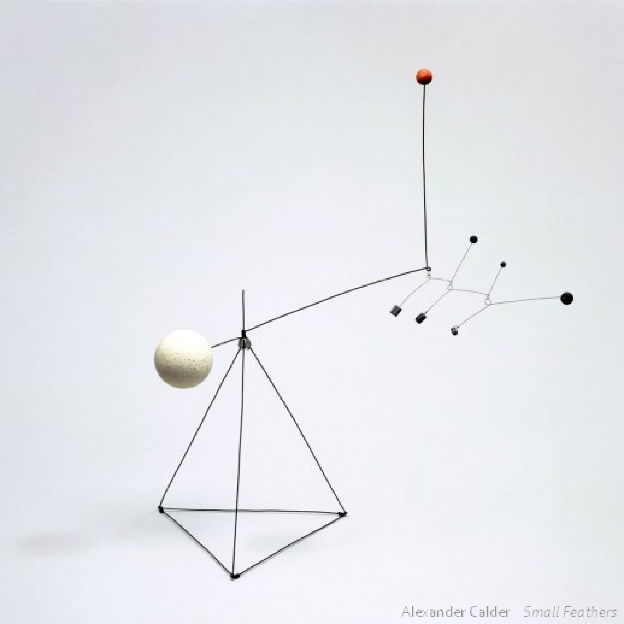 Paul Calder « Small Feathers »